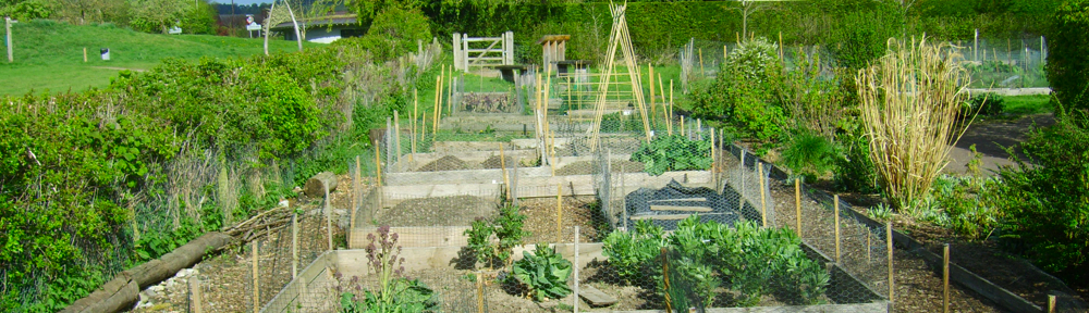 Craven Arms Community Garden