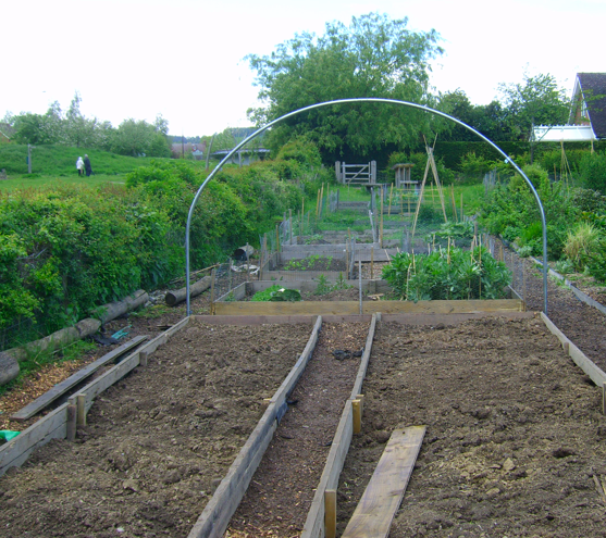 CACG Polytunnel First Hoop 19th May 2015
