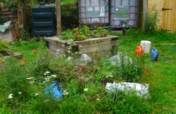 Community Garden Rubbish August 2015