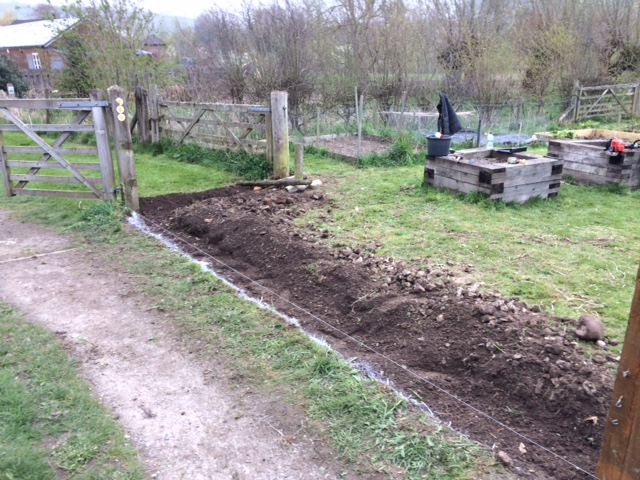Ground Preparation for the New Fence