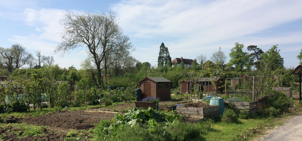 A photograph of Bowbrook Allotment Community